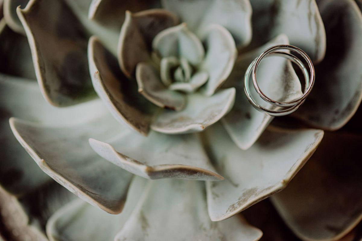 Hochzeitsringe Sukkulente